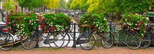 Университети в Холандия